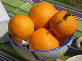 Esmorzar amb taronges